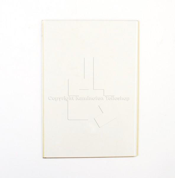 seitliches Türglas für Scan 9 bei 4-teiliger Tür bis Baujahr 08.1991